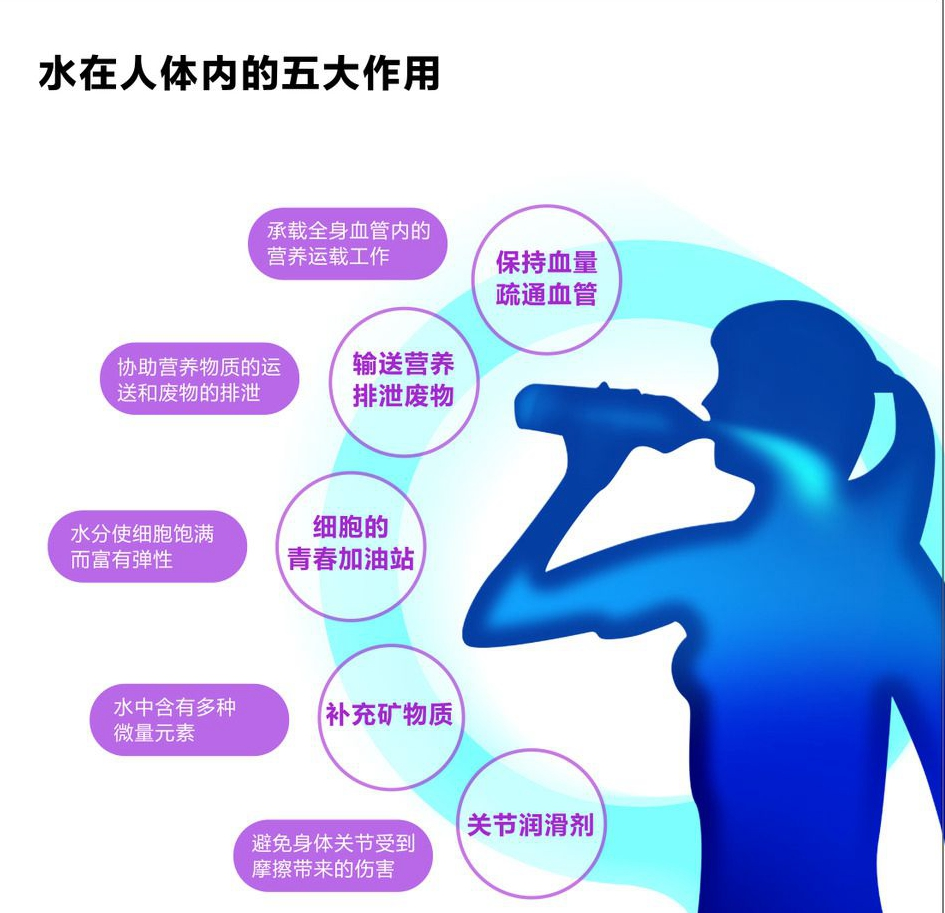 水在人体的五大作用